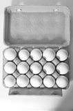 organiska ägg Arkivbild