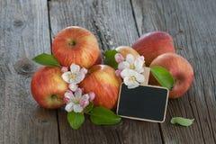 Organiska äpplen Royaltyfri Foto