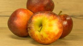Organiska äpplen i rött fotografering för bildbyråer