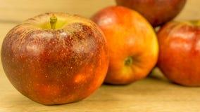 Organiska äpplen i rött arkivfoto