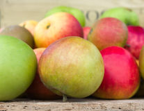 Organiska äpplen på skärm med ut ur fokusbakgrund Arkivbilder