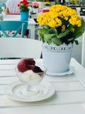 Organiska Berry Sorbet Ice Cream Balls i den Glass koppen med blommabakgrund royaltyfri bild