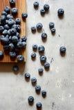 Organiska blåbärbär på ett träbräde Ljus efterrätt för sommar av bär på en grå bakgrund sund mat Sommar och hälsa Royaltyfri Fotografi