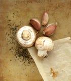 Organiska champinjoner, vitlök och örtar på en gammal lantlig stenskärbräda Royaltyfria Bilder
