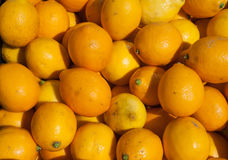 organiska citroner Royaltyfria Bilder