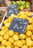 organiska citroner Royaltyfri Foto