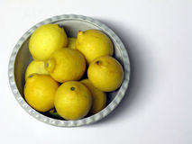 Organiska citroner i en bunke royaltyfri bild