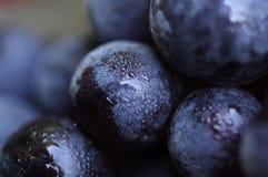 organiska druvor fotografering för bildbyråer