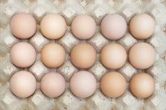 Organiska fega ägg i magasinpåsk Arkivfoto