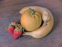 Organiska frukter på tabellen Royaltyfri Fotografi