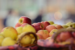 Organiska fullvuxna äpplen i en korg med blåst bakgrund Royaltyfria Foton