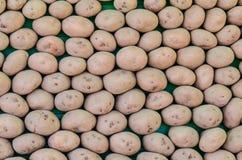 Organiska gårdsprodukter för läcker ny potatismat Fotografering för Bildbyråer
