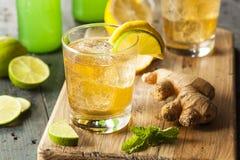 Organiska Ginger Ale Soda Arkivfoton