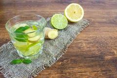 Organiska Ginger Ale Soda i ett exponeringsglas med citronen och limefrukt royaltyfria foton