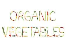 organiska grönsaker royaltyfri illustrationer