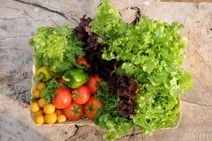 organiska grönsaker för korg Arkivfoton