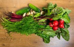 Organiska grönsaker för ny vår på träbakgrund Royaltyfri Bild