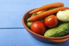 Organiska grönsaker för strikt vegetarianmat Naturliga ingredienser för diet-disk sund livsstil för begrepp kopiera avstånd Royaltyfria Foton