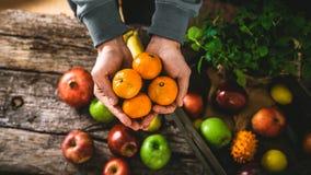 Organiska grönsaker på trä fotografering för bildbyråer