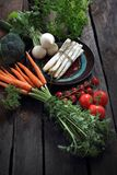 Organiska gr?nsaker som ?r raka fr?n tr?dg?rden, mor?tter, r?disa, broccoli, sparris, tomater arkivbilder