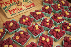 Organiska hallon som är till salu på bondemarknaden Royaltyfri Bild