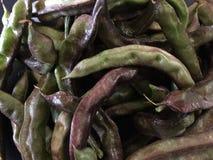Organiska haricot vert Royaltyfri Bild