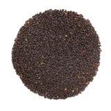 Organiska heliga Basil Seed Ocimum tenuiflorum eller Tulsi i cirkeln Shape royaltyfria bilder