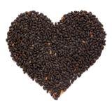 Organiska heliga Basil Seed Ocimum tenuiflorum eller Tulsi i hjärta Shape royaltyfri fotografi
