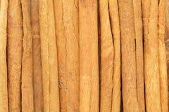 Organiska kanelbruna pinnar (Cinnamomumverumen) Royaltyfri Fotografi