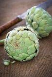 organiska kronärtskockor Royaltyfri Bild