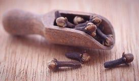 Organiska kryddnejlikor royaltyfri fotografi