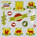 Organiska lantbrukdesignelement royaltyfria foton