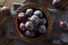 Organiska mogna purpurfärgade Prune Plums Arkivfoto