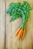 organiska morötter Fotografering för Bildbyråer