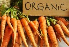 Organiska verkliga grönsaker: morötter Royaltyfria Bilder