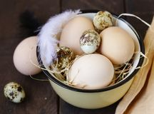 Organiska naturliga ägg royaltyfri bild