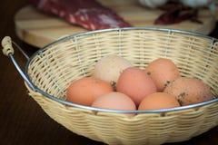 Organiska nya ägg för lantgård Arkivbilder