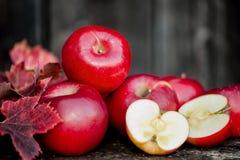 Organiska nya äpplen på träbakgrund i autum Arkivfoto