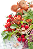 Nya grönsaker Fotografering för Bildbyråer
