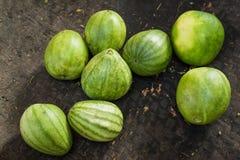Organiska orientaliska melon på den utomhus- asiatiska marknaden Royaltyfria Foton