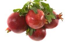 organiska pomegranates Arkivbild