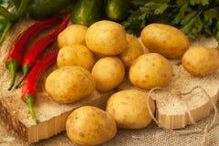 Organiska potatisar med tecken av potatissjukdomen Arkivbilder