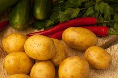 Organiska potatisar med tecken av potatissjukdomen Arkivbild