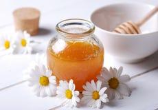 Honung och tusenskönor fotografering för bildbyråer