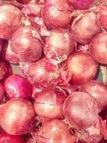 Organiska röda lökar på en bonde` s marknadsför Royaltyfria Foton
