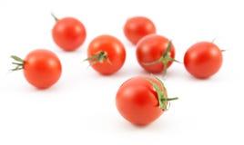 Organiska röda tomater på vit Royaltyfri Foto