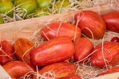 Organiska randiga Roman Tomatos sålde på den lokala marknaden i Provence royaltyfria foton