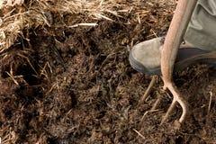 organiska rich för komposttäckning royaltyfri foto