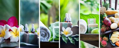 Organiska skönhetsmedel, naturliga fruktoljor Begreppsbrunnsort, hudomsorg, e Royaltyfri Fotografi
