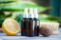 Organiska skönhetsmedel, naturliga fruktoljor Begreppsbrunnsort, hudomsorg, e Arkivbild